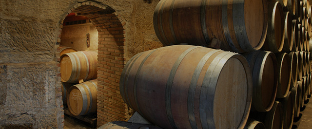 Enjoy the diversity of the wineries of Rioja Alavesa!